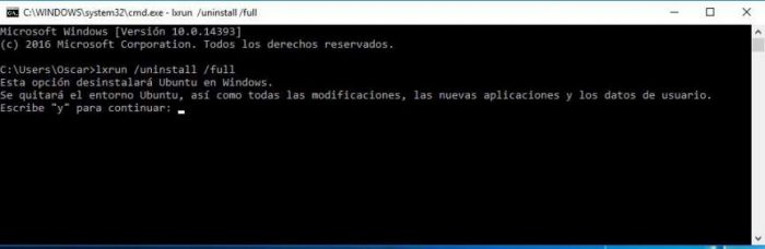 desinstalar bash de windows 10