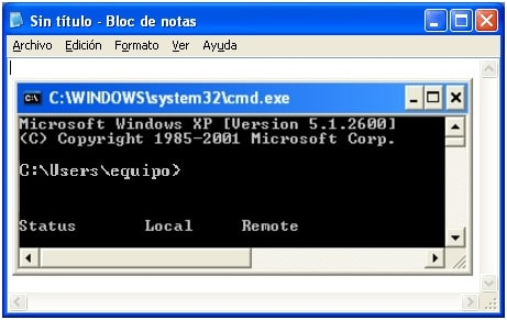 que es console windows host